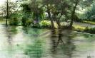 Nexing-Wasserspiegelung