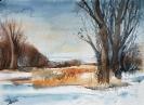 Sumpf im Winter